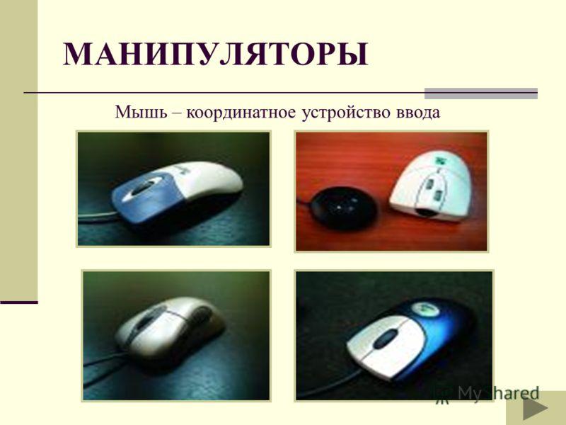 МАНИПУЛЯТОРЫ Мышь – координатное устройство ввода