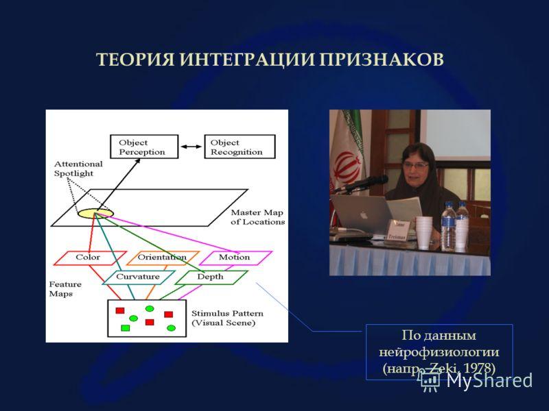 ТЕОРИЯ ИНТЕГРАЦИИ ПРИЗНАКОВ По данным нейрофизиологии (напр., Zeki, 1978)