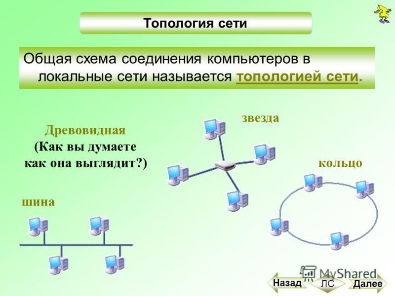 Общая схема соединения компьютеров в локальные сети называется топологией сети. шина звезда кольцо Топология сети Древовидная (Как вы думаете как она выглядит?) Далее Назад ЛС