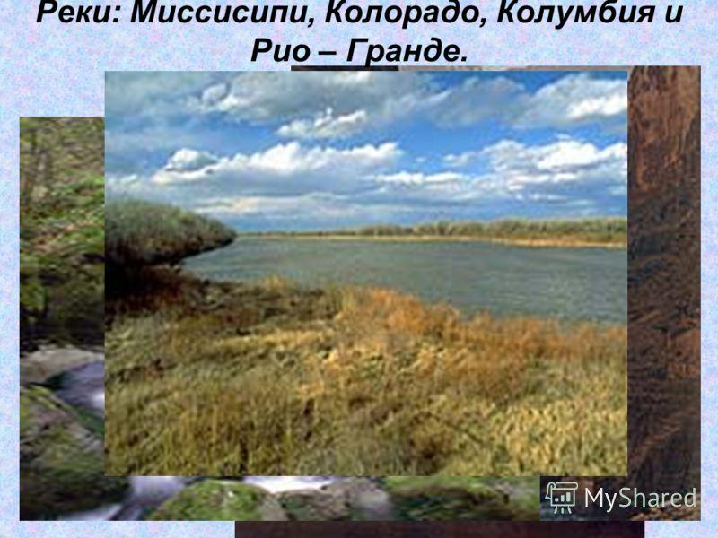 Реки: Миссисипи, Колорадо, Колумбия и Рио – Гранде.