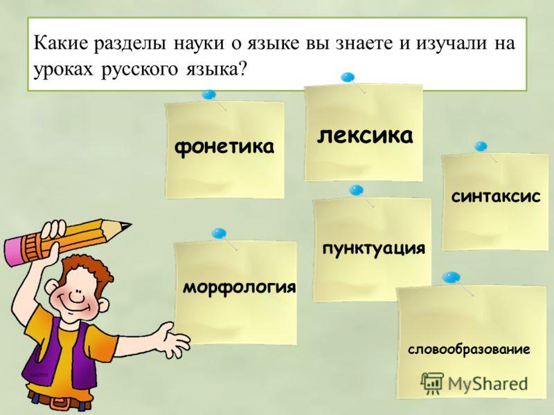 Какие разделы науки о языке вы знаете и изучали на уроках русского языка? фонетика лексика словообразование морфология синтаксис пунктуация
