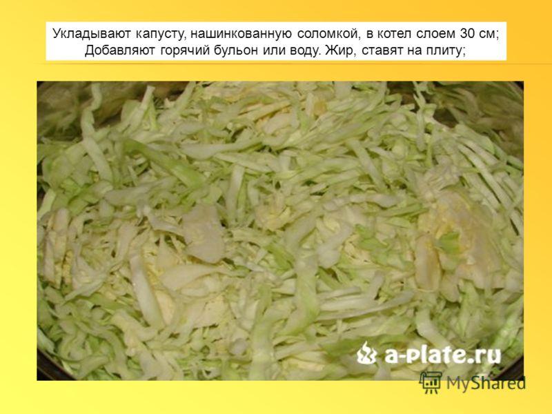 Укладывают капусту, нашинкованную соломкой, в котел слоем 30 см; Добавляют горячий бульон или воду. Жир, ставят на плиту;