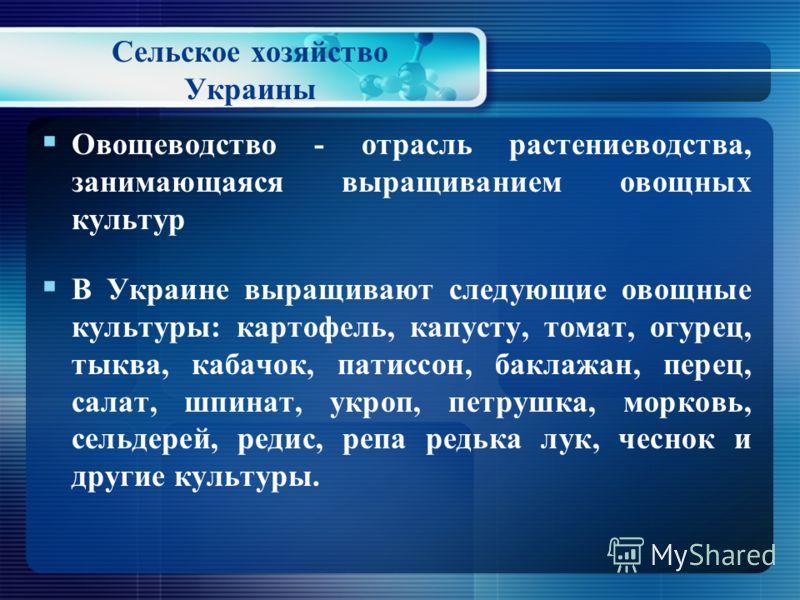 Cельское хозяйство Украины Кукуруза