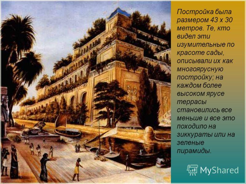 Постройка была размером 43 х 30 метров. Те, кто видел эти изумительные по красоте сады, описывали их как многоярусную постройку; на каждом более высоком ярусе террасы становились все меньше и все это походило на зиккураты или на зеленые пирамиды.