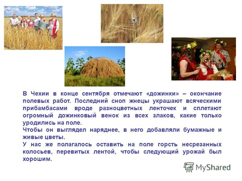 В Чехии в конце сентября отмечают «дожинки» – окончание полевых работ. Последний сноп жнецы украшают всяческими прибамбасами вроде разноцветных ленточек и сплетают огромный дожинковый венок из всех злаков, какие только уродились на поле. Чтобы он выг