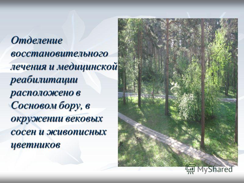 Отделение восстановительного лечения и медицинской реабилитации расположено в Сосновом бору, в окружении вековых сосен и живописных цветников