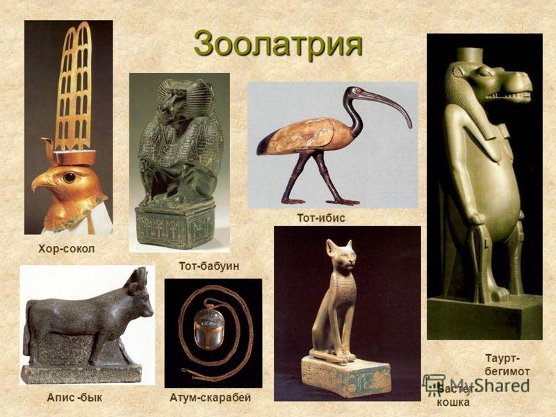 Зоолатрия Апис -бык Бастет- кошка Таурт- бегимот Хор-сокол Тот-ибис Тот-бабуин Атум-скарабей