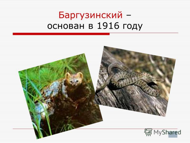 Баргузинский – основан в 1916 году