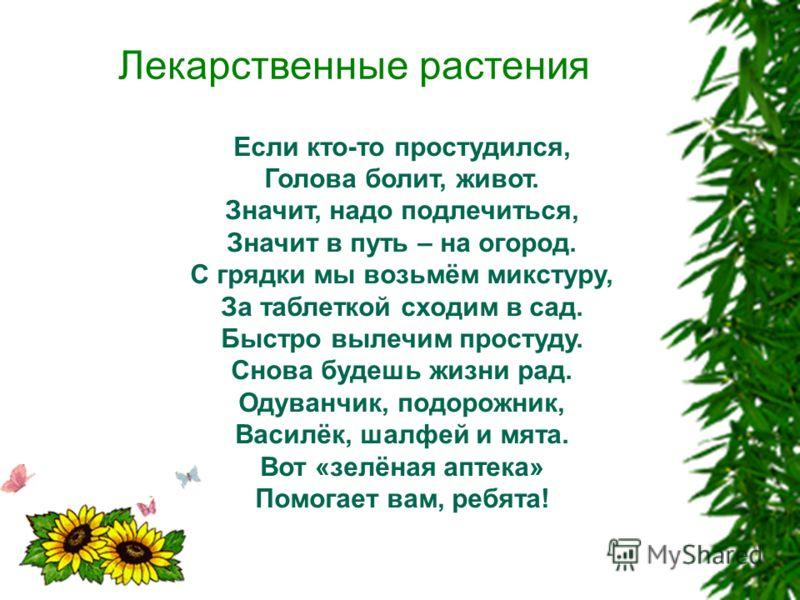 Лекарственные растения Если кто-то простудился, Голова болит, живот. Значит, надо подлечиться, Значит в путь – на огород. С грядки мы возьмём микстуру, За таблеткой сходим в сад. Быстро вылечим простуду. Снова будешь жизни рад. Одуванчик, подорожник,