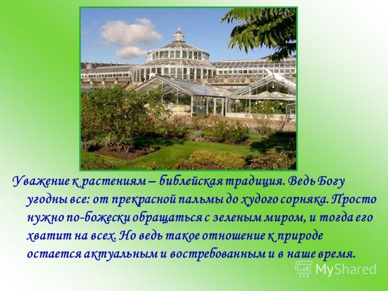 Уважение к растениям – библейская традиция. Ведь Богу угодны все: от прекрасной пальмы до худого сорняка. Просто нужно по-божески обращаться с зеленым миром, и тогда его хватит на всех. Но ведь такое отношение к природе остается актуальным и востребо