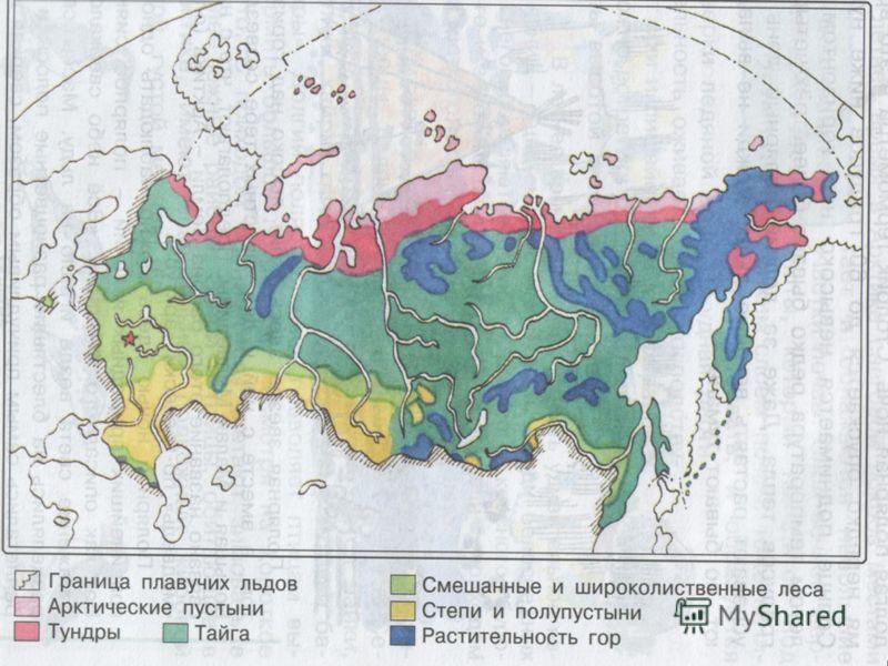 Климат, почвы Растительный мир Животный мир Природные зоны