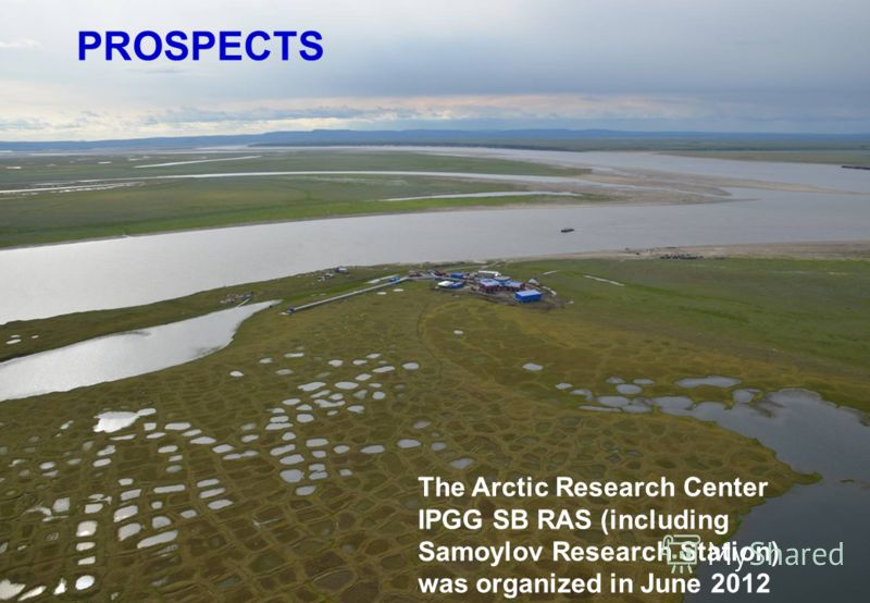 PROSPECTS The Arctic Research Center IPGG SB RAS (including Samoylov Research Station) was organized in June 2012