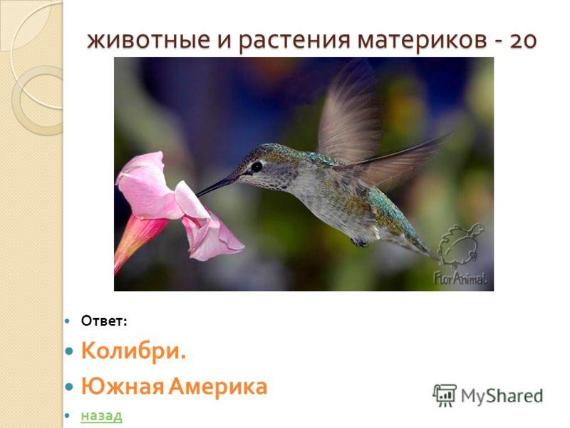 животные и растения материков - 20 животные и растения материков - 20 Ответ : Колибри. Южная Америка назад