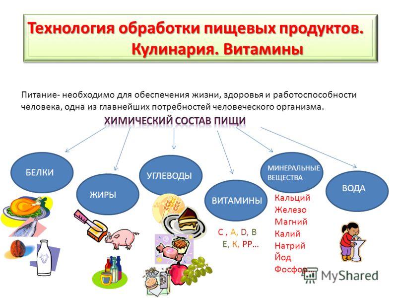 Технология обработки пищевых продуктов. Кулинария. Витамины Кулинария. Витамины Технология обработки пищевых продуктов. Кулинария. Витамины Кулинария. Витамины Питание- необходимо для обеспечения жизни, здоровья и работоспособности человека, одна из