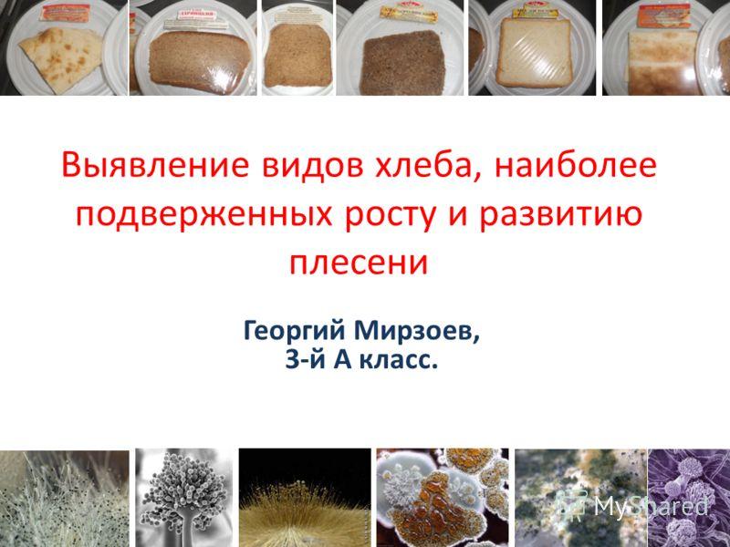Выявление видов хлеба, наиболее подверженных росту и развитию плесени Георгий Мирзоев, 3-й А класс.