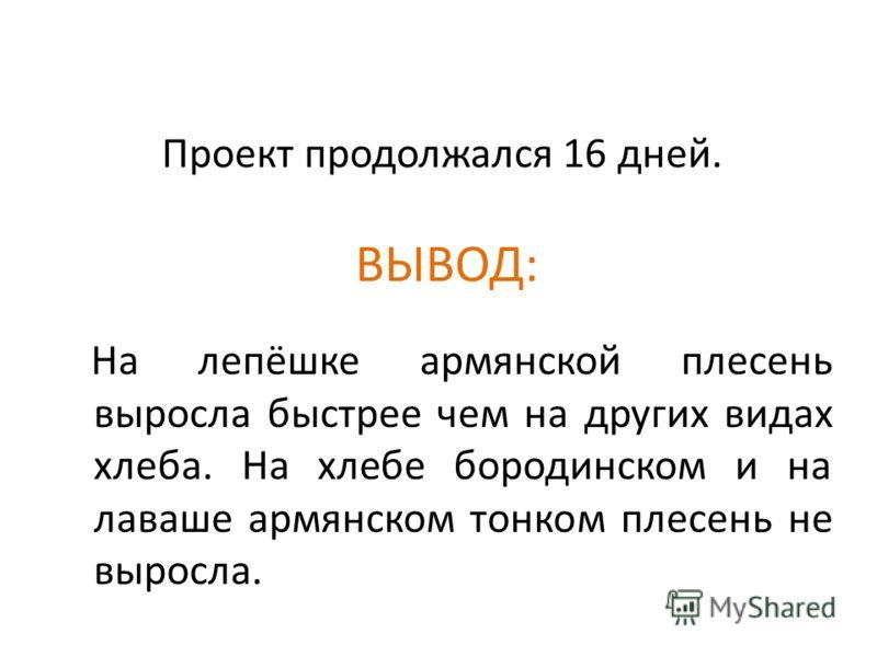Проект продолжался 16 дней. ВЫВОД: На лепёшке армянской плесень выросла быстрее чем на других видах хлеба. На хлебе бородинском и на лаваше армянском тонком плесень не выросла.