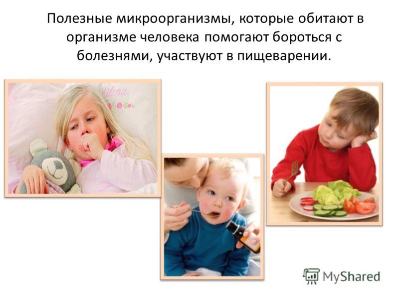 Полезные микроорганизмы, которые обитают в организме человека помогают бороться с болезнями, участвуют в пищеварении.