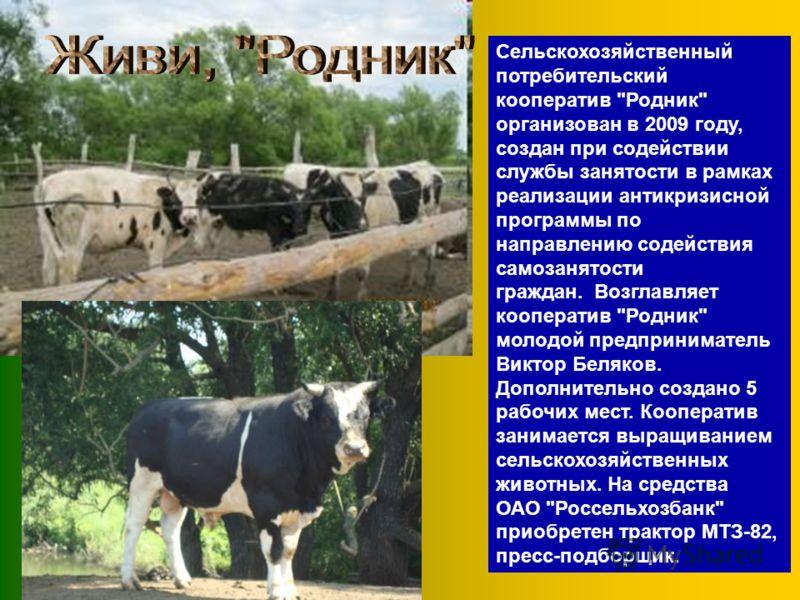 Сельскохозяйственный потребительский кооператив
