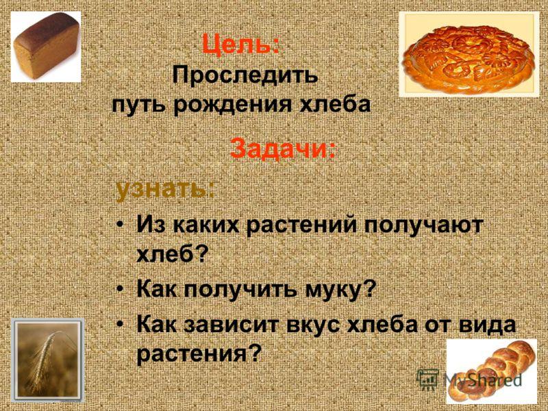 Цель: Проследить путь рождения хлеба Задачи: узнать: Из каких растений получают хлеб? Как получить муку? Как зависит вкус хлеба от вида растения?