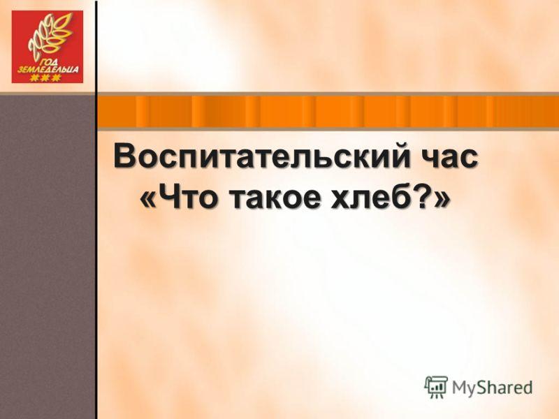 Воспитательский час «Что такое хлеб?»