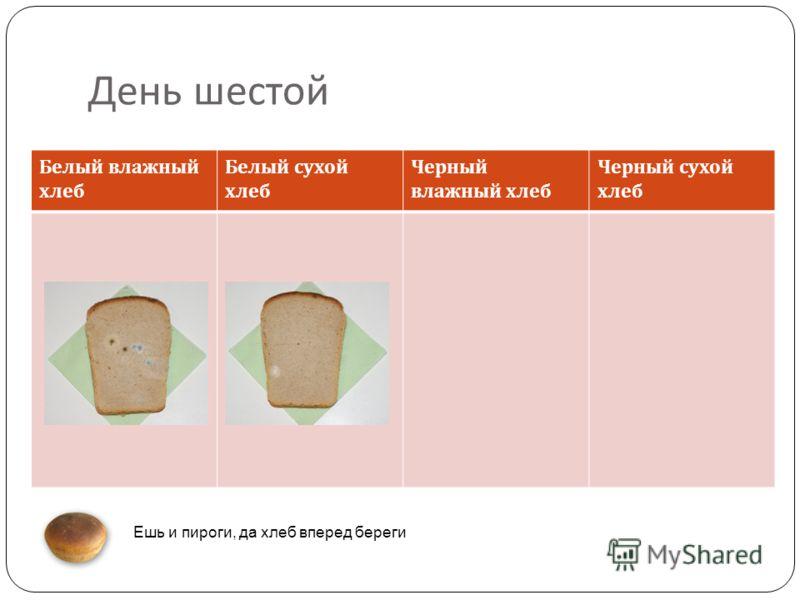 День шестой Белый влажный хлеб Белый сухой хлеб Черный влажный хлеб Черный сухой хлеб Ешь и пироги, да хлеб вперед береги