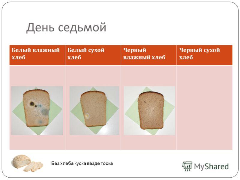 День седьмой Белый влажный хлеб Белый сухой хлеб Черный влажный хлеб Черный сухой хлеб Без хлеба куска везде тоска