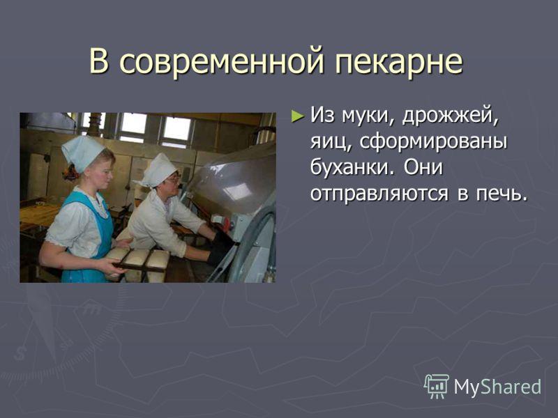 В современной пекарне Из муки, дрожжей, яиц, сформированы буханки. Они отправляются в печь.