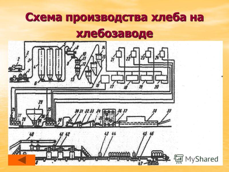 Схема производства хлеба на хлебозаводе