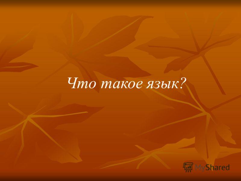 Что такое язык?