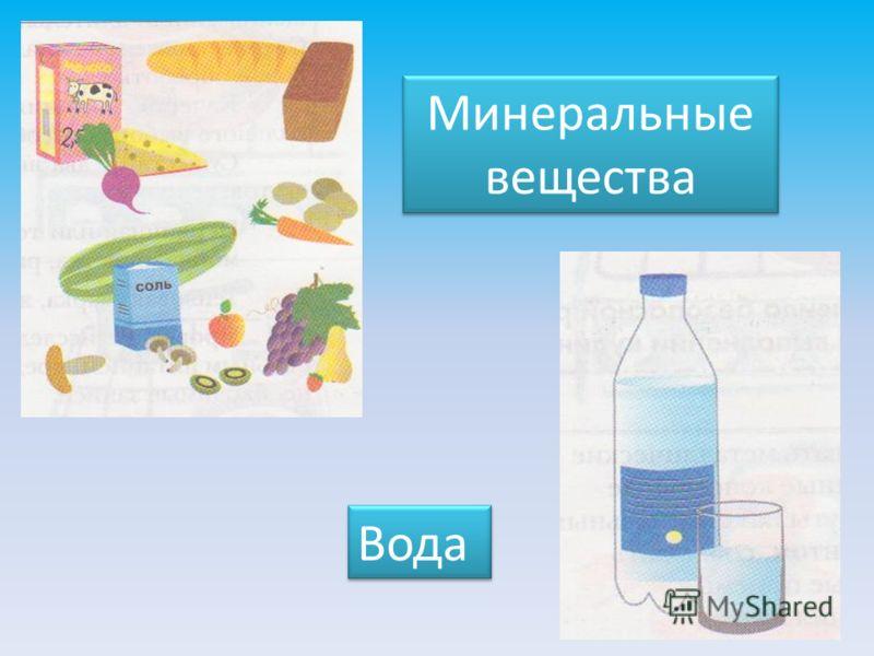 Минеральные вещества Вода