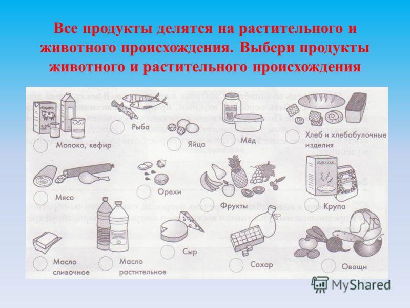 Все продукты делятся на растительного и животного происхождения. Выбери продукты животного и растительного происхождения