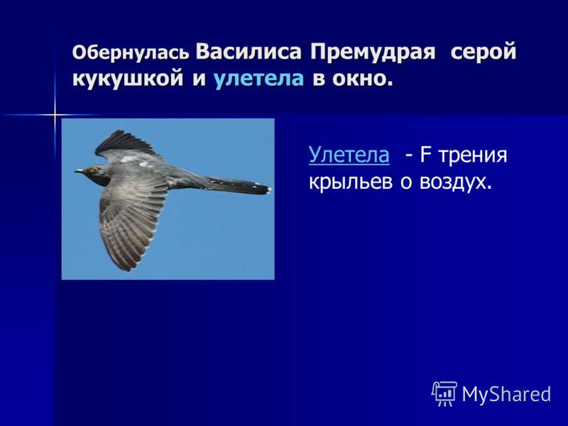 Обернулась Василиса Премудрая серой кукушкой и улетела в окно. Улетела - F трения крыльев о воздух.