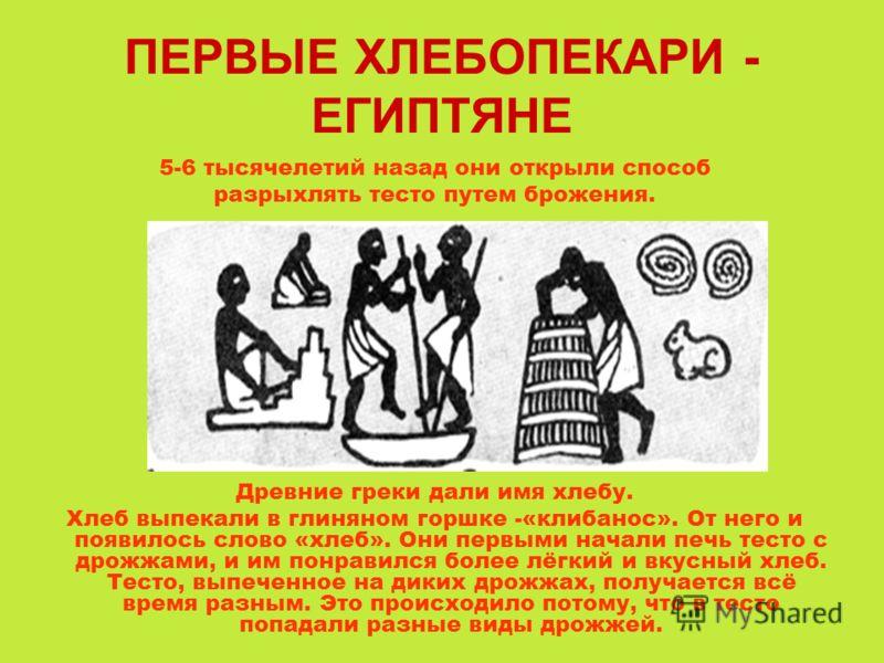 ПЕРВЫЕ ХЛЕБОПЕКАРИ - ЕГИПТЯНЕ 5-6 тысячелетий назад они открыли способ разрыхлять тесто путем брожения. Древние греки дали имя хлебу. Хлеб выпекали в глиняном горшке -«клибанос». От него и появилось слово «хлеб». Они первыми начали печь тесто с дрожж