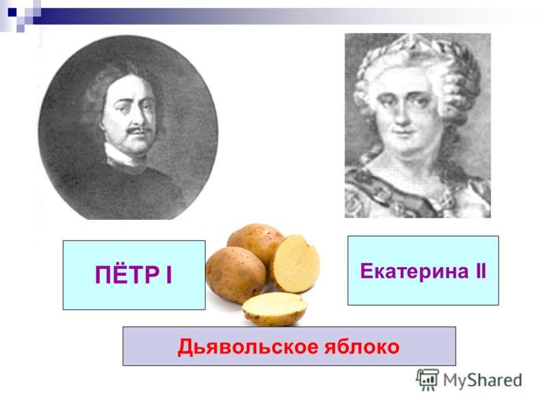 ПЁТР I Екатерина II Дьявольское яблоко