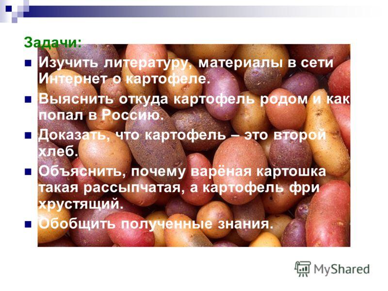 Задачи: Изучить литературу, материалы в сети Интернет о картофеле. Выяснить откуда картофель родом и как попал в Россию. Доказать, что картофель – это второй хлеб. Объяснить, почему варёная картошка такая рассыпчатая, а картофель фри хрустящий. Обобщ