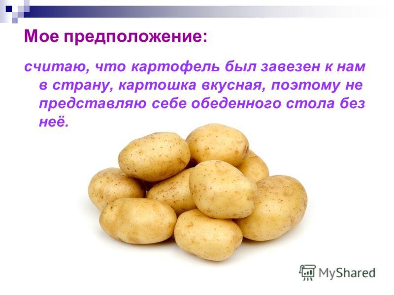 Мое предположение: считаю, что картофель был завезен к нам в страну, картошка вкусная, поэтому не представляю себе обеденного стола без неё.