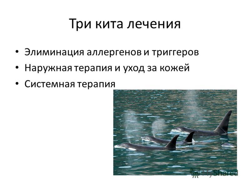 Три кита лечения Элиминация аллергенов и триггеров Наружная терапия и уход за кожей Системная терапия