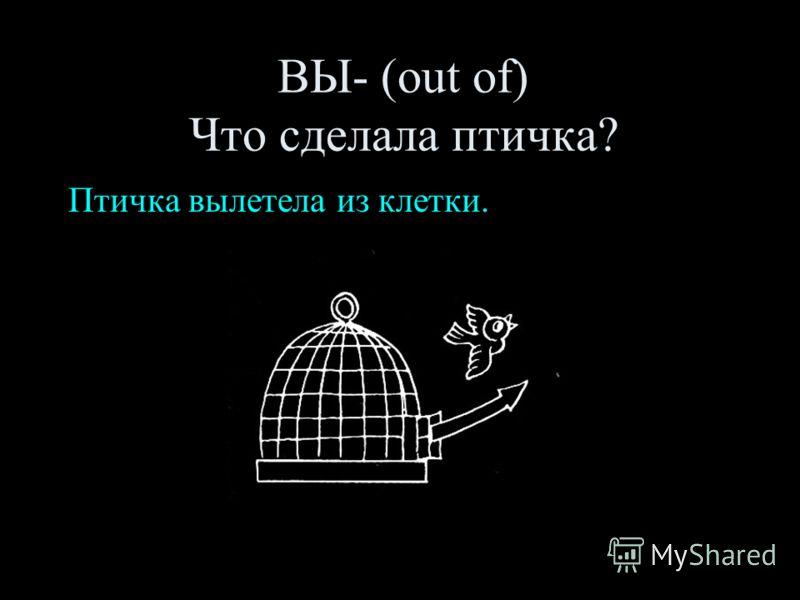 ВЫ- (out of) Что сделала птичка? Птичка вылетела из клетки.