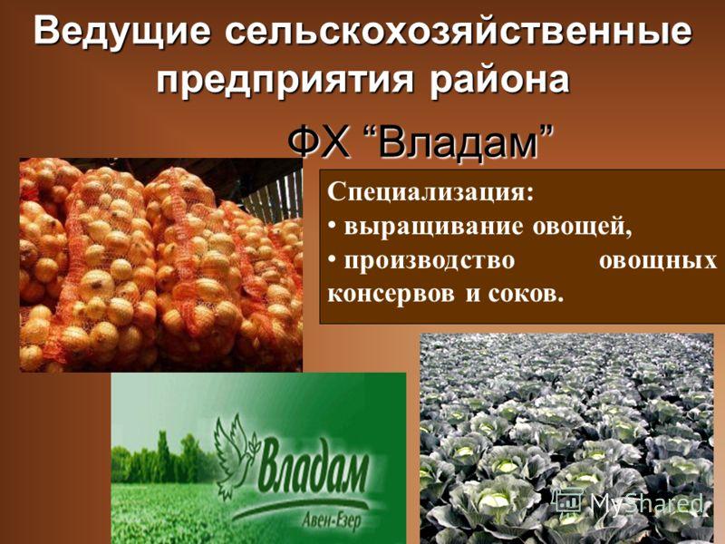 Специализация: выращивание овощей, производство овощных консервов и соков. Ведущие сельскохозяйственные предприятия района ФХ Владам