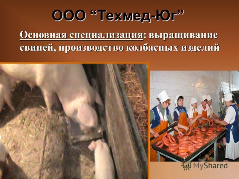 ООО Техмед-Юг Основная специализация: выращивание свиней, производство колбасных изделий