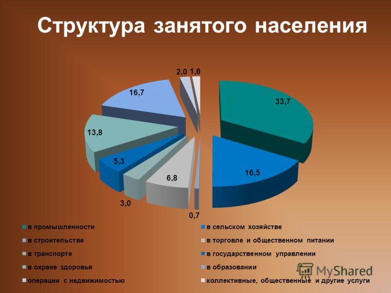 Структура занятого населения