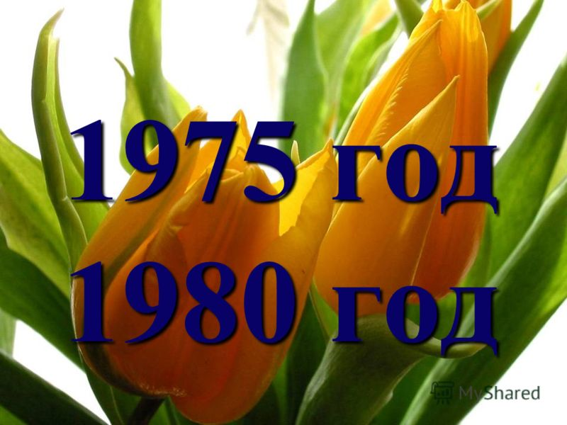 1975 год 1980 год
