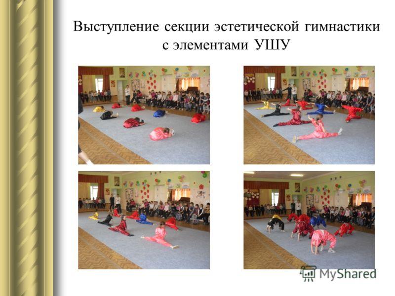 Выступление секции эстетической гимнастики с элементами УШУ
