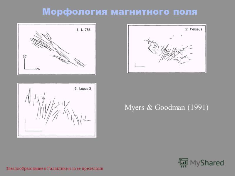 Звездообразование в Галактике и за ее пределами Морфология магнитного поля Myers & Goodman (1991)