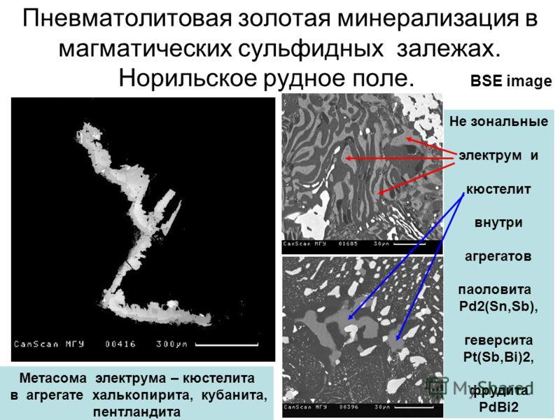 Пневматолитовая золотая минерализация в магматических сульфидных залежах. Норильское рудное поле. BSE image Метасома электрума – кюстелита в агрегате халькопирита, кубанита, пентландита Не зональные электрум и кюстелит внутри агрегатов паоловита Pd2(