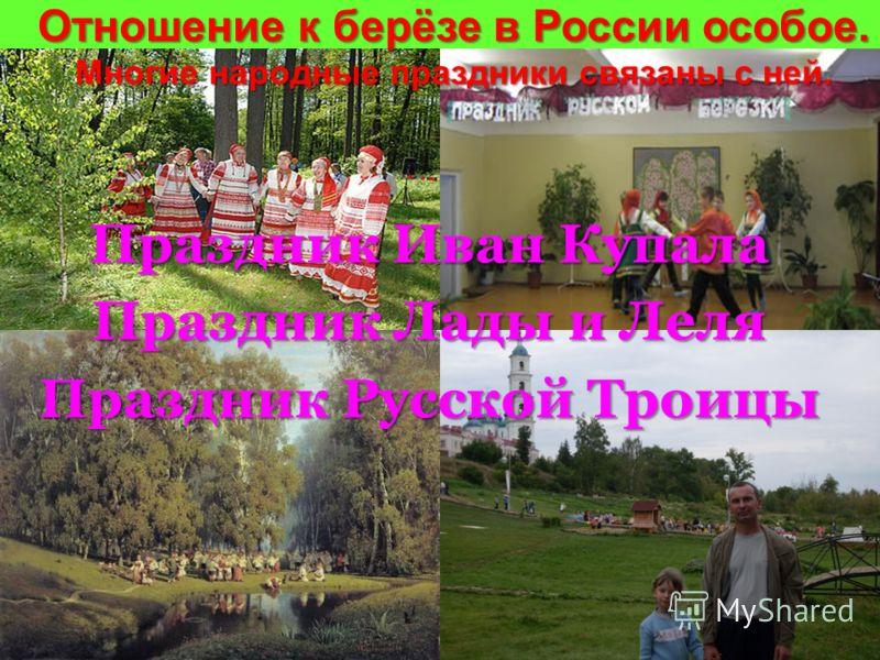 Отношение к берёзе в России особое. Многие народные праздники связаны с ней. Праздник Иван Купала Праздник Лады и Леля Праздник Русской Троицы