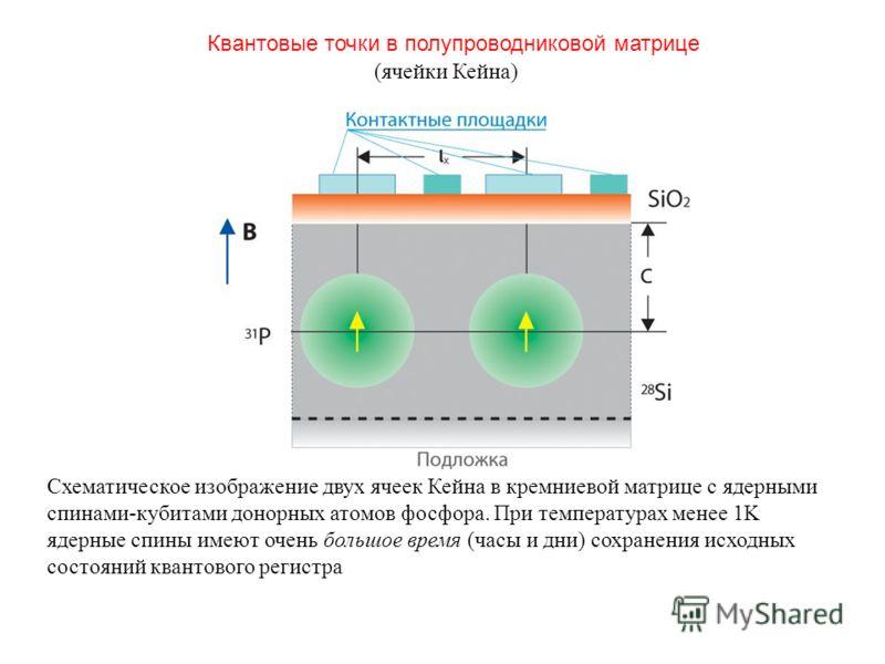 Схематическое изображение двух ячеек Кейна в кремниевой матрице с ядерными спинами-кубитами донорных атомов фосфора. При температурах менее 1K ядерные спины имеют очень большое время (часы и дни) сохранения исходных состояний квантового регистра Кван