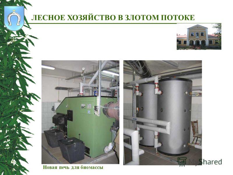 ЛЕСНОЕ ХОЗЯЙСТВО В ЗЛОТОМ ПОТОКЕ Новая печь для биомассы