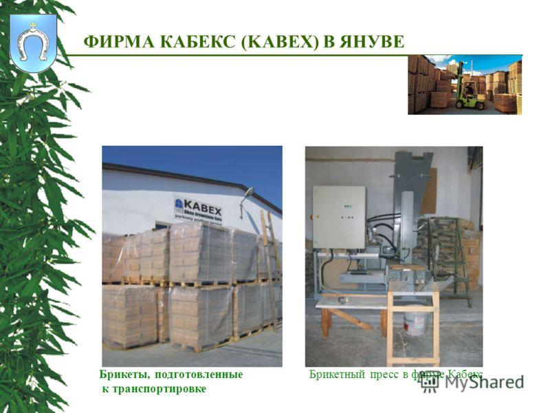 ФИРМА КАБЕКС (KABEX) В ЯНУВЕ Брикеты, подготовленные к транспортировке Брикетный пресс в фирме Кабекс