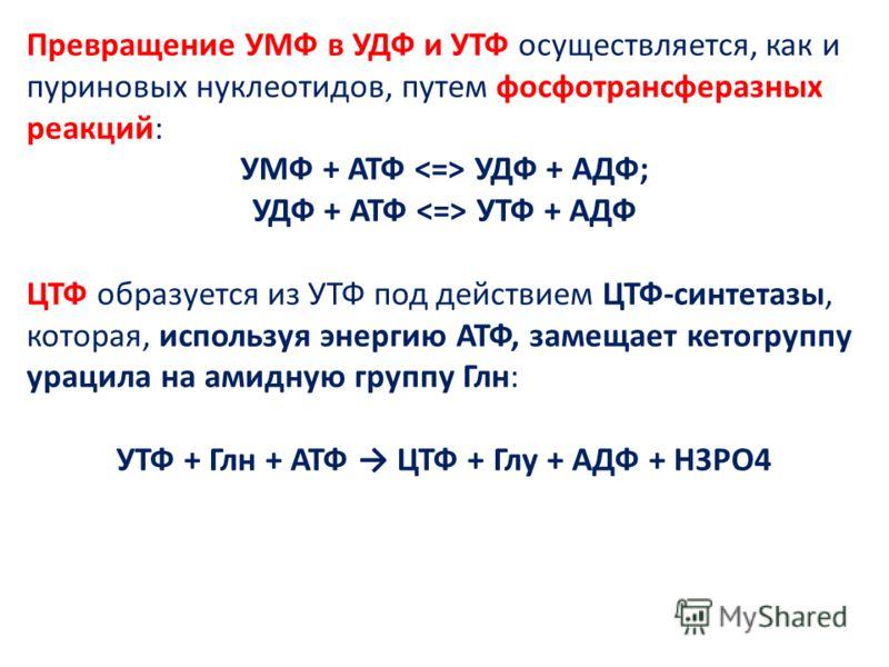 Превращение УМФ в УДФ и УТФ осуществляется, как и пуриновых нуклеотидов, путем фосфотрансферазных реакций: УМФ + АТФ УДФ + АДФ; УДФ + АТФ УТФ + АДФ ЦТФ образуется из УТФ под действием ЦТФ-синтетазы, которая, используя энергию АТФ, замещает кетогруппу
